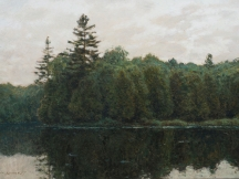 Aperçu de l'œuvre: La pointe du centenaire, Lac Saint-Émile