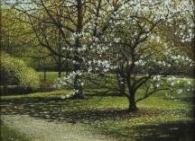 Artwork preview: Magnolias