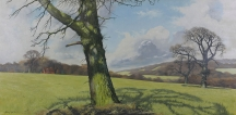 Artwork preview: Worcestershire meadow
