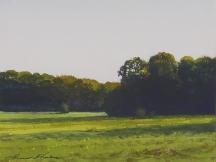 Artwork preview: Summer pastures