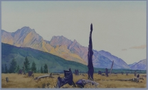 Artwork preview: Burnt timber in a rocky mountain valley