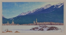 Artwork preview: Beaver lodge