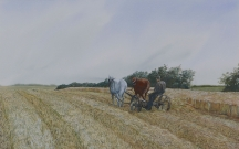 Artwork preview: June mowing on the ridge
