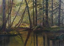 Artwork preview: Sunlit woodland pond